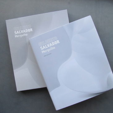 Mergulho, lançamento do livro